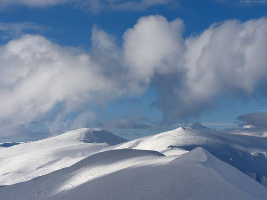 Snowy winter, Mount Pip Ivan, the Carpathians, Ukraine, photo 12