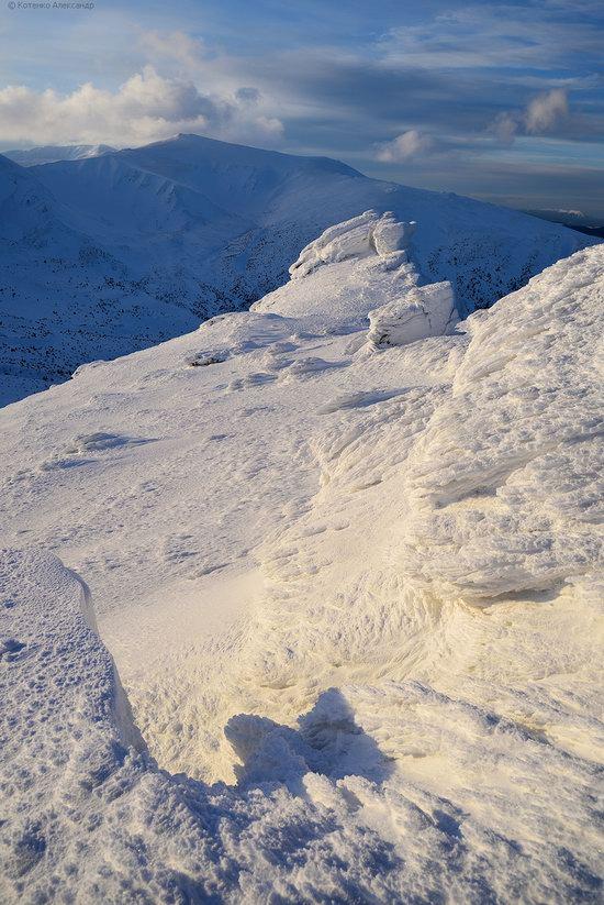 Snowy winter, Mount Pip Ivan, the Carpathians, Ukraine, photo 16