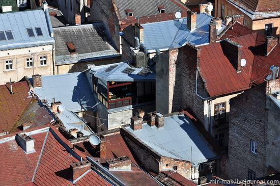 The roofs of Lviv, Ukraine, photo 12