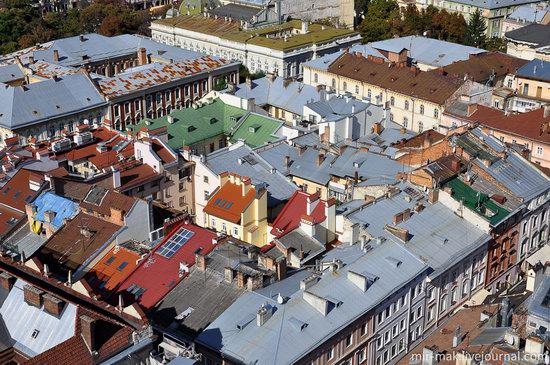 The roofs of Lviv, Ukraine, photo 13