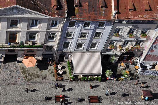 The roofs of Lviv, Ukraine, photo 21