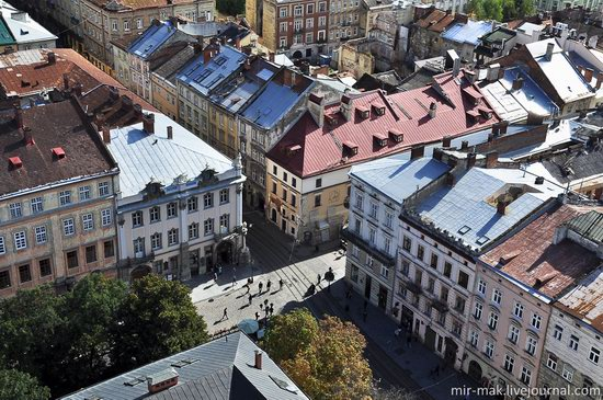 The roofs of Lviv, Ukraine, photo 23