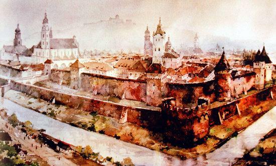 Castles of Ukraine, picture 14