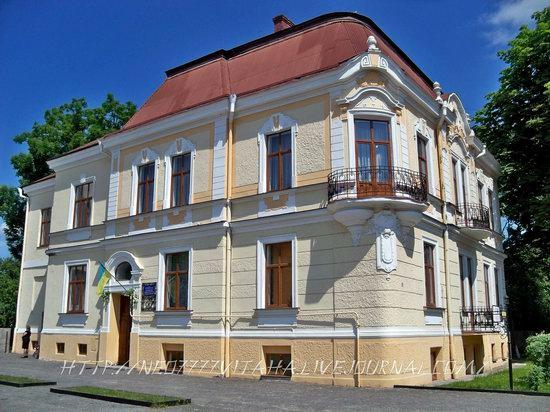 Kolomyya city, Ukraine, photo 17