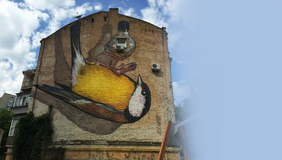 Kyiv murals street art, Ukraine, photo 15