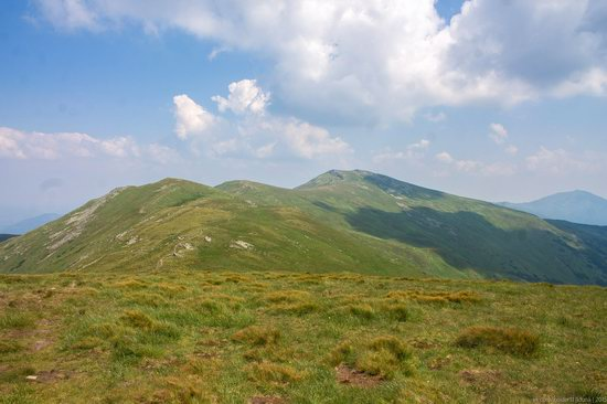Chornohora range, Carpathians, Ukraine, photo 15