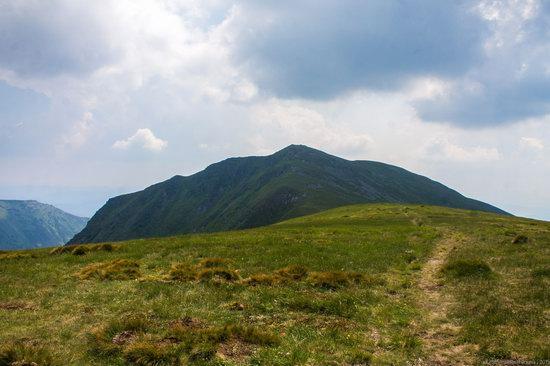 Chornohora range, Carpathians, Ukraine, photo 16