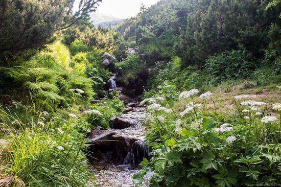 Chornohora range, Carpathians, Ukraine, photo 2