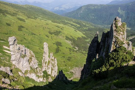 Chornohora range, Carpathians, Ukraine, photo 22