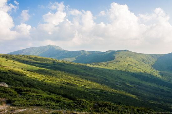 Chornohora range, Carpathians, Ukraine, photo 5