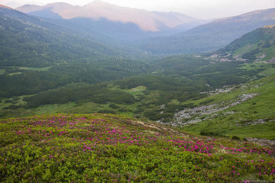 Chornohora range, Carpathians, Ukraine, photo 7