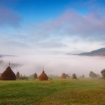 One foggy autumn morning in the Carpathians