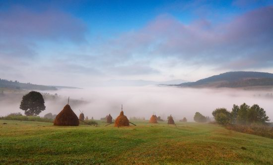 One misty autumn morning in the Carpathians, Ukraine, photo 1