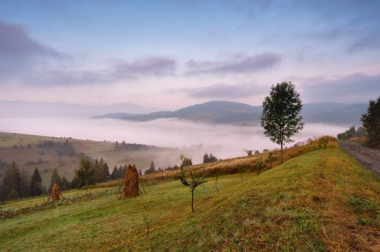 One misty autumn morning in the Carpathians, Ukraine, photo 2
