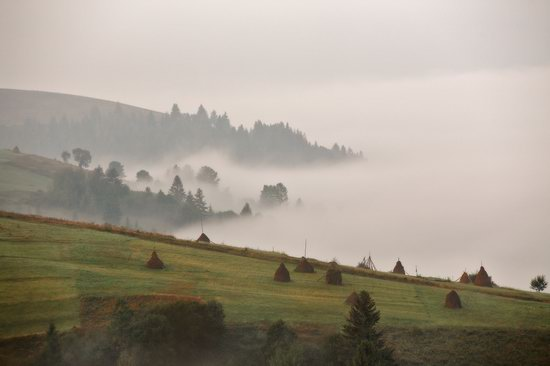 One misty autumn morning in the Carpathians, Ukraine, photo 3