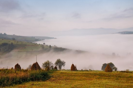 One misty autumn morning in the Carpathians, Ukraine, photo 4