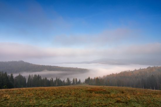 One misty autumn morning in the Carpathians, Ukraine, photo 6