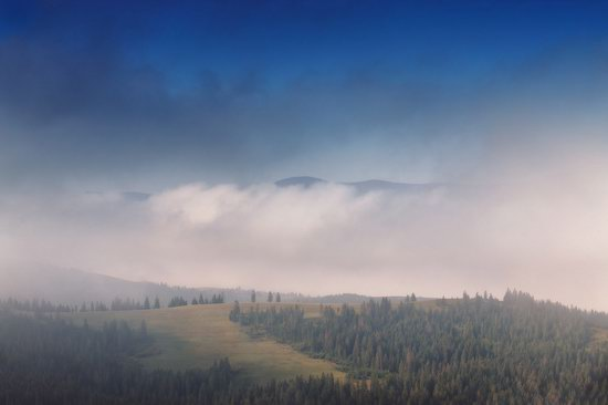 One misty autumn morning in the Carpathians, Ukraine, photo 9