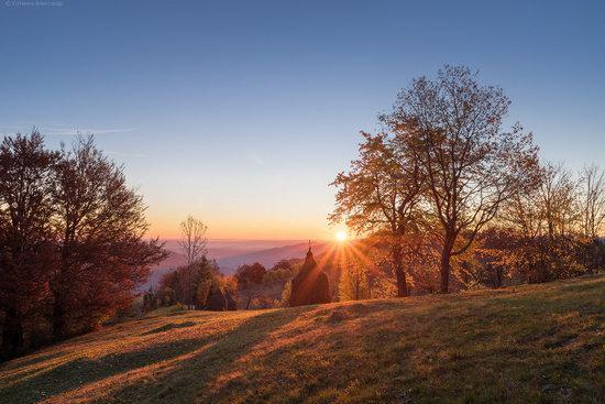 Golden autumn, Sokilsky Ridge, the Carpathians, Ukraine, photo 1