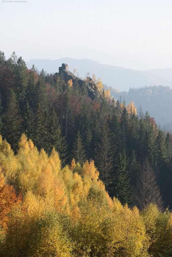 Golden autumn, Sokilsky Ridge, the Carpathians, Ukraine, photo 10