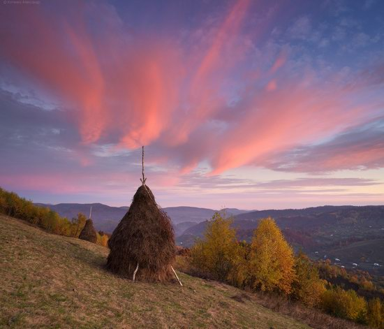 Golden autumn, Sokilsky Ridge, the Carpathians, Ukraine, photo 12