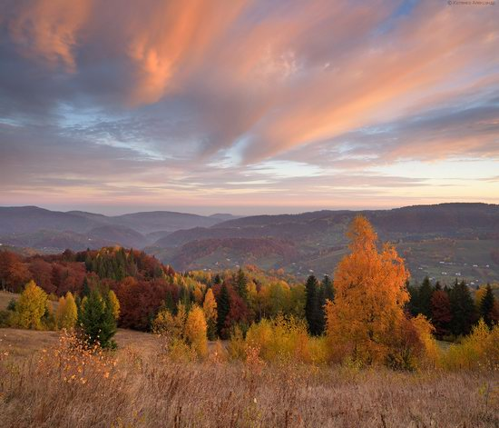 Golden autumn, Sokilsky Ridge, the Carpathians, Ukraine, photo 13