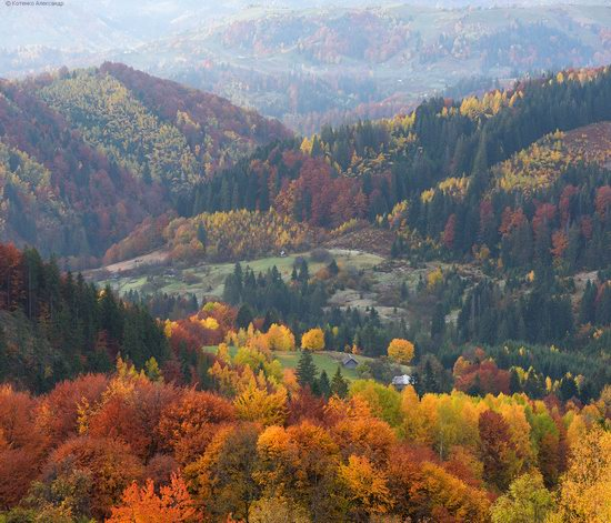 Golden autumn, Sokilsky Ridge, the Carpathians, Ukraine, photo 14