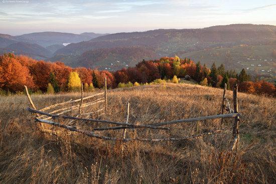 Golden autumn, Sokilsky Ridge, the Carpathians, Ukraine, photo 15