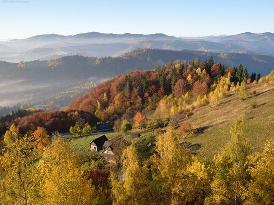 Golden autumn, Sokilsky Ridge, the Carpathians, Ukraine, photo 6