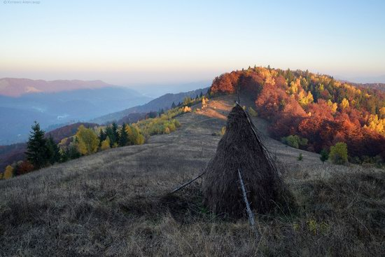 Golden autumn, Sokilsky Ridge, the Carpathians, Ukraine, photo 8