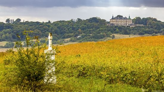 Pidhirtsi Castle, Lviv region, Ukraine, photo 16