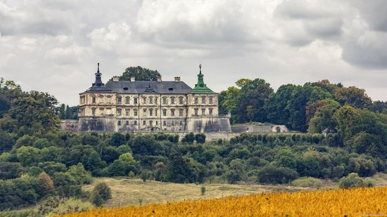 Pidhirtsi Castle, Lviv region, Ukraine, photo 17