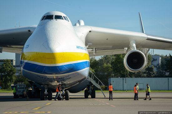 An-225 Mriya aircraft, Ukraine, photo 6