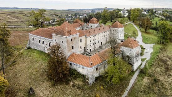 Svirzh Castle, Lviv oblast,  Ukraine, photo 15