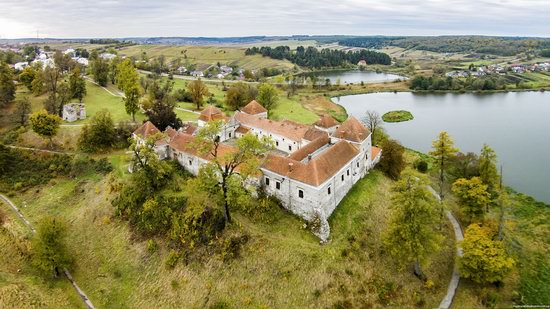 Svirzh Castle, Lviv oblast,  Ukraine, photo 6