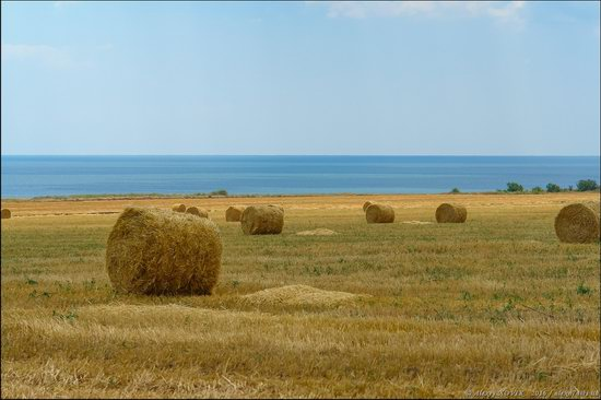 Hot summer day near Berdyansk, Ukraine, photo 11