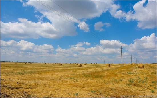 Hot summer day near Berdyansk, Ukraine, photo 3