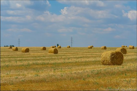 Hot summer day near Berdyansk, Ukraine, photo 4