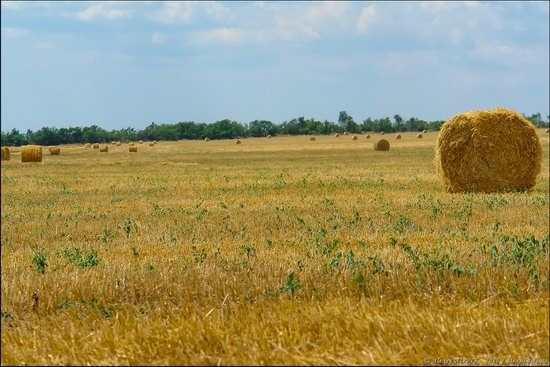 Hot summer day near Berdyansk, Ukraine, photo 6