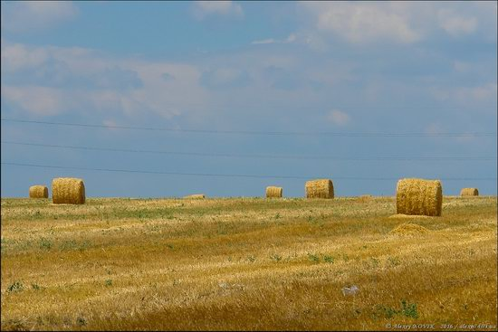 Hot summer day near Berdyansk, Ukraine, photo 7