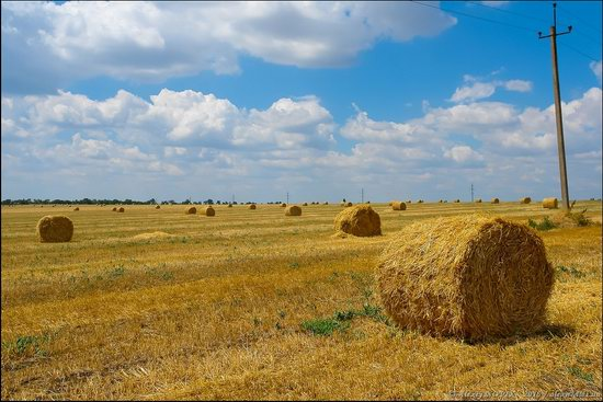 Hot summer day near Berdyansk, Ukraine, photo 8