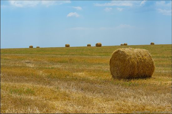 Hot summer day near Berdyansk, Ukraine, photo 9