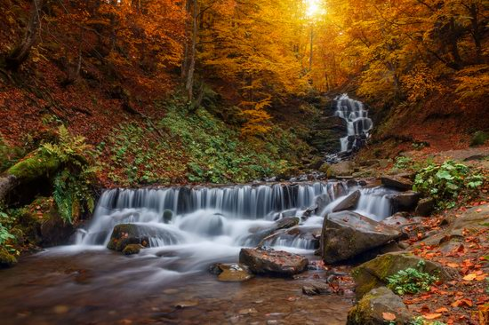 Top 10 photos of Ukrainian nature in 2016, photo 1