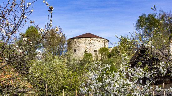 Castle in Budaniv, Ternopil region, Ukraine, photo 14