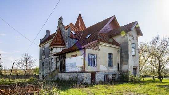 Timelman's Manor-Palace in Lychkivtsi, Ternopil region, Ukraine, photo 11