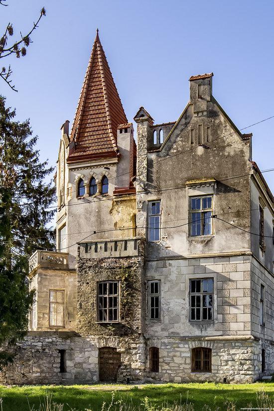 Timelman's Manor-Palace in Lychkivtsi, Ternopil region, Ukraine, photo 5