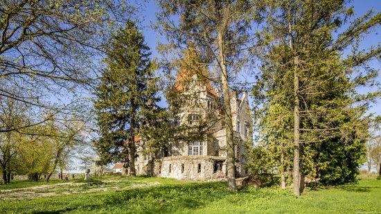 Timelman's Manor-Palace in Lychkivtsi, Ternopil region, Ukraine, photo 6