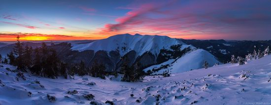 Winter on Pishkonya Range, Zakarpattia region, Ukraine, photo 20
