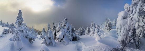 Winter on Pishkonya Range, Zakarpattia region, Ukraine, photo 3