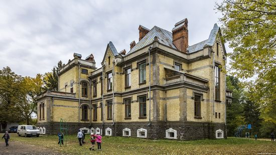 Chikhachev Palace in Mytky, Vinnytsia region, Ukraine, photo 6